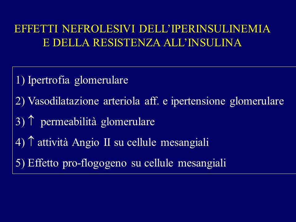 EFFETTI NEFROLESIVI DELLIPERINSULINEMIA E DELLA RESISTENZA ALLINSULINA 1) Ipertrofia glomerulare 2) Vasodilatazione arteriola aff. e ipertensione glom