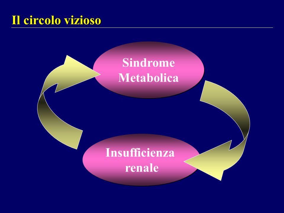 Il circolo vizioso Sindrome Metabolica Sindrome Metabolica Insufficienza renale Insufficienza renale