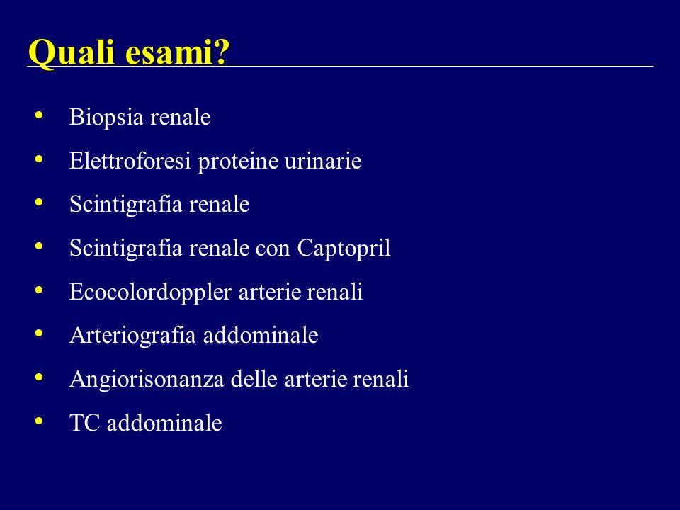 Biopsia renale Elettroforesi proteine urinarie Scintigrafia renale Scintigrafia renale con Captopril Ecocolordoppler arterie renali Arteriografia addo