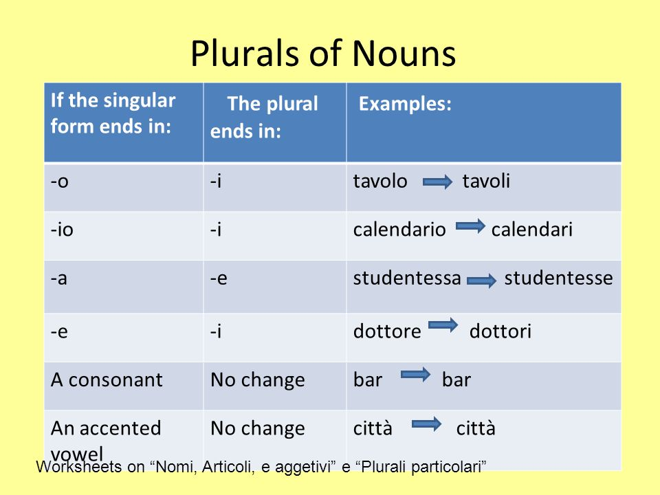 Plurals of Nouns Many nouns ending in – co, -go, -ca, -ga add h in the written plural to preserve the sound of the c or g.