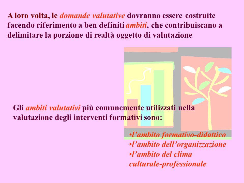 Le domande valutative costituiscono concetti generali che prefigurano relazioni individuabili tra più proprietà dei fenomeni oggetto della ricerca e c