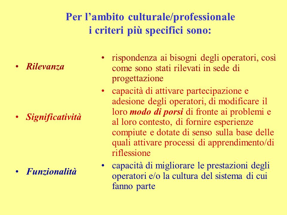 Per lambito organizzativo i criteri più specifici sono: Rilevanza Efficienza Funzionalità rispondenza ai bisogni dellorganizzazione, così come sono st