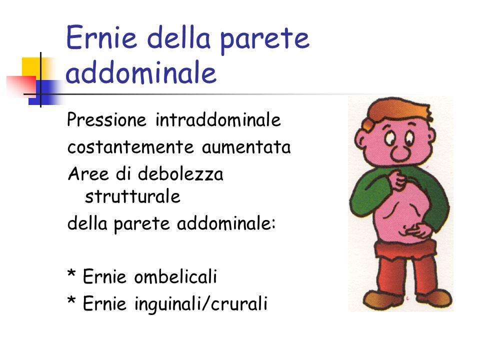 Ernie della parete addominale Pressione intraddominale costantemente aumentata Aree di debolezza strutturale della parete addominale: * Ernie ombelicali * Ernie inguinali/crurali