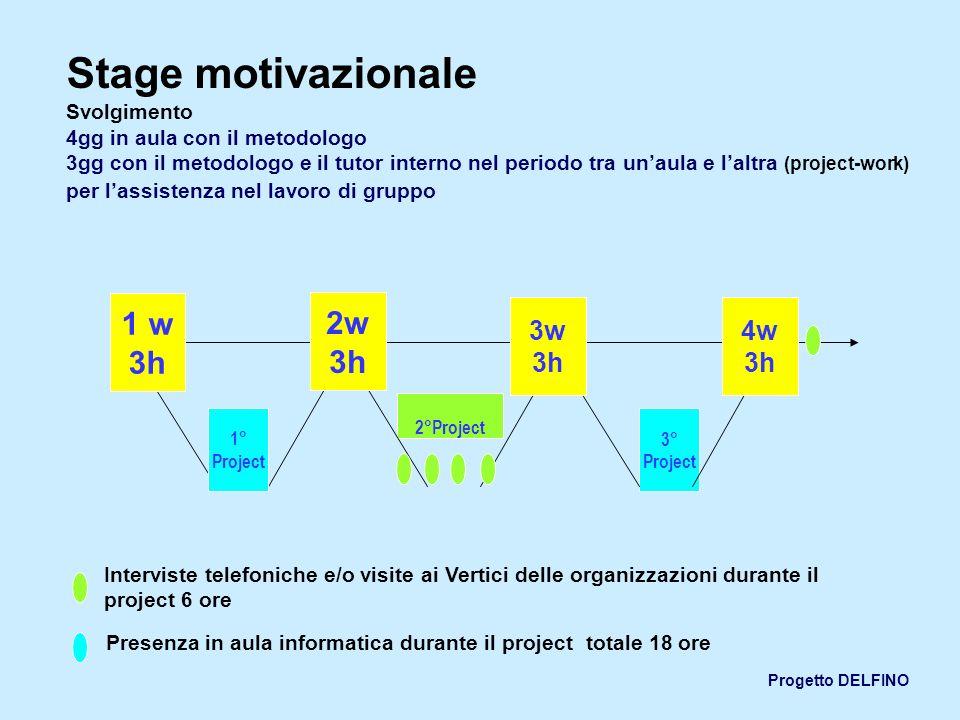 Progetto DELFINO Stage motivazionale Svolgimento 4gg in aula con il metodologo 3gg con il metodologo e il tutor interno nel periodo tra unaula e laltr