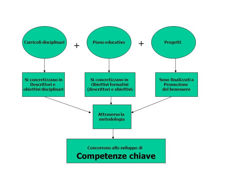 Curricoli disciplinariPiano educativoProgetti Si concretizzano in Descrittori e obiettivi disciplinari Si concretizzano in Obiettivi formativi (descri