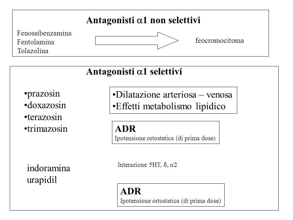 Fenossibenzamina Fentolamina Tolazolina feocromocitoma prazosin doxazosin terazosin trimazosin Dilatazione arteriosa – venosa Effetti metabolismo lipi