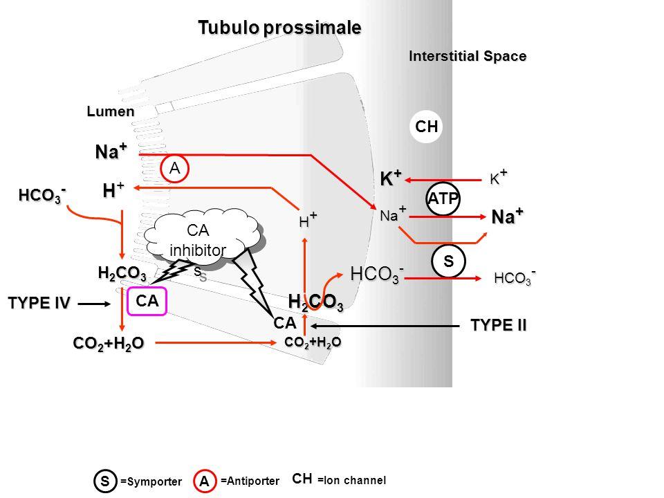 Inibitori dellAnidrasi Carbonica FarmacoPotenza relativa Assorb.