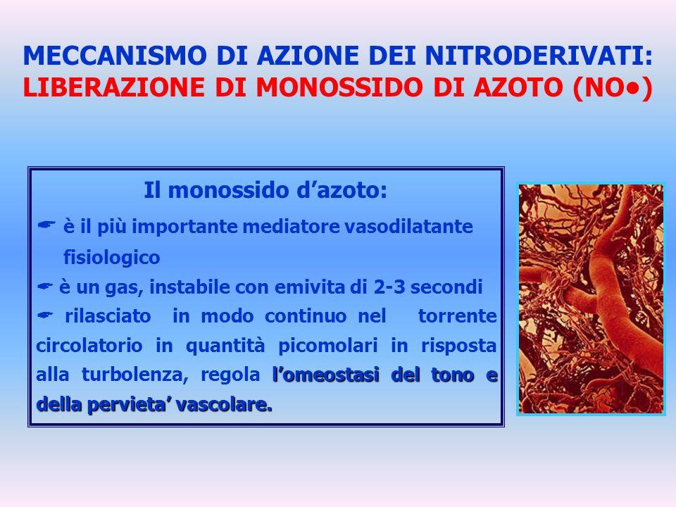 MECCANISMO DI AZIONE DEI NITRODERIVATI: LIBERAZIONE DI MONOSSIDO DI AZOTO (NO) Il monossido dazoto: è il più importante mediatore vasodilatante fisiol