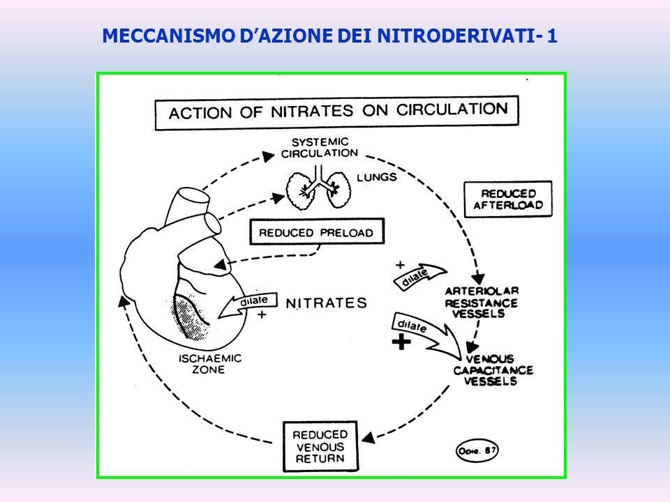 MECCANISMO DAZIONE DEI NITRODERIVATI- 1
