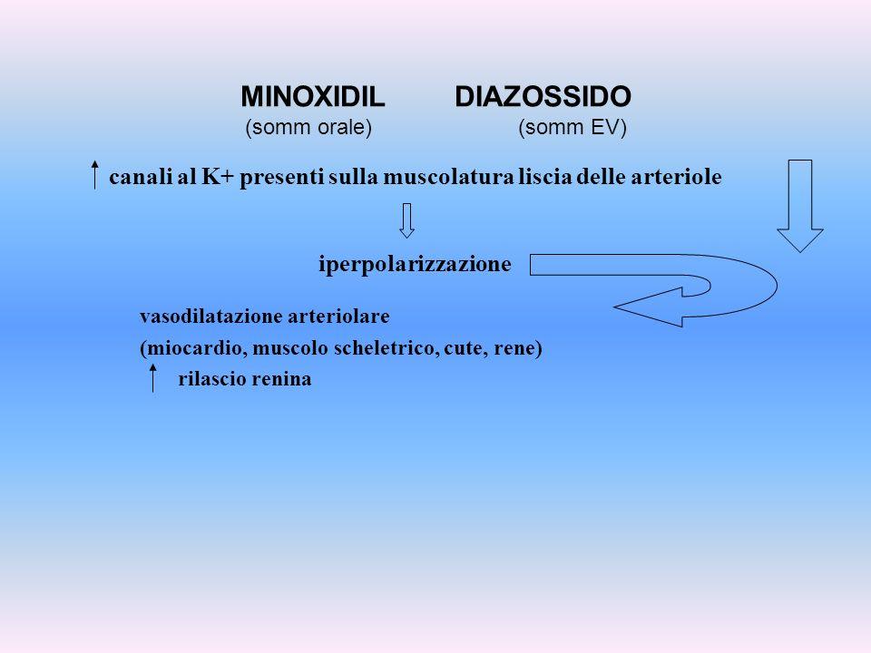 canali al K+ presenti sulla muscolatura liscia delle arteriole iperpolarizzazione MINOXIDIL DIAZOSSIDO (somm orale) (somm EV) vasodilatazione arteriol