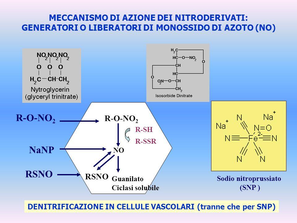 Sodio nitroprussiato (SNP ) MECCANISMO DI AZIONE DEI NITRODERIVATI: GENERATORI O LIBERATORI DI MONOSSIDO DI AZOTO (NO) DENITRIFICAZIONE IN CELLULE VAS