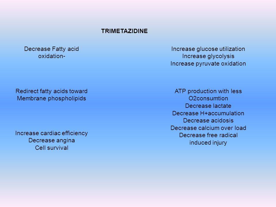 TRIMETAZIDINE Decrease Fatty acid oxidation- Increase glucose utilization Increase glycolysis Increase pyruvate oxidation Redirect fatty acids toward