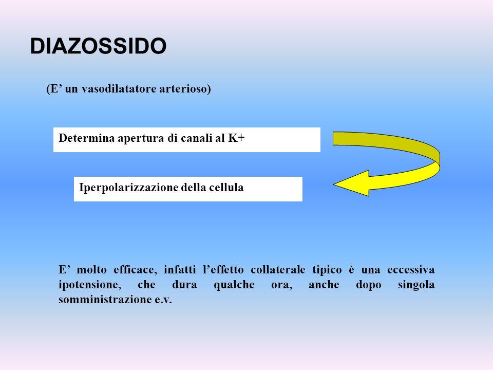 DIAZOSSIDO Determina apertura di canali al K+ (E un vasodilatatore arterioso) E molto efficace, infatti leffetto collaterale tipico è una eccessiva ip