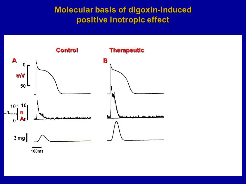 10 nAnAnAnA mV ControlTherapeuticToxic A B C 0 50 0 10 -4 L/L max 0 3 mg Molecular basis of digoxin-induced positive inotropic effect 100ms