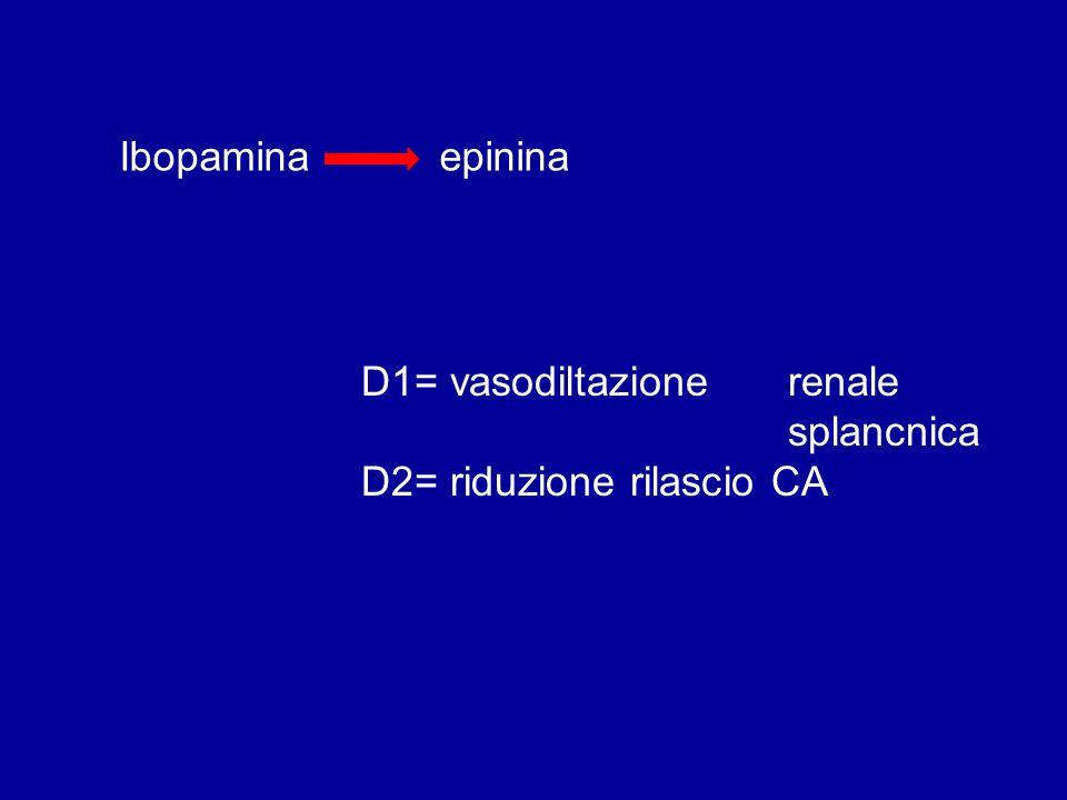 Ibopaminaepinina D1= vasodiltazione renale splancnica D2= riduzione rilascio CA