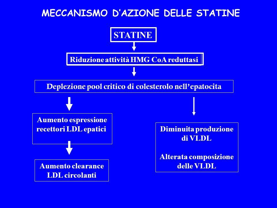 Aumento clearance LDL circolanti Aumento espressione recettori LDL epatici Deplezione pool critico di colesterolo nellepatocita Riduzione attività HMG CoA reduttasi STATINE Diminuita produzione di VLDL Alterata composizione delle VLDL MECCANISMO DAZIONE DELLE STATINE