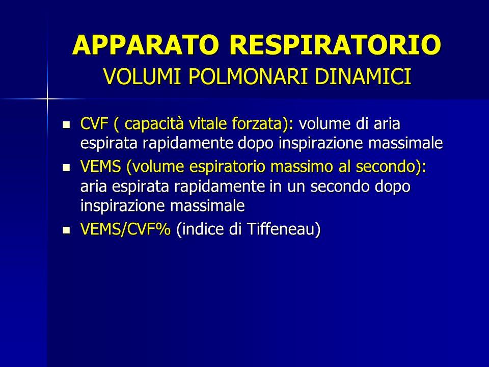 CVF ( capacità vitale forzata): volume di aria espirata rapidamente dopo inspirazione massimale VEMS (volume espiratorio massimo al secondo): aria espirata rapidamente in un secondo dopo inspirazione massimale VEMS/CVF% (indice di Tiffeneau) VOLUMI POLMONARI DINAMICI