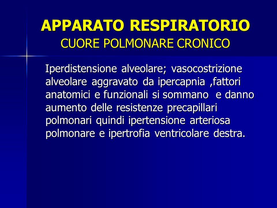 Iperdistensione alveolare; vasocostrizione alveolare aggravato da ipercapnia,fattori anatomici e funzionali si sommano e danno aumento delle resistenze precapillari polmonari quindi ipertensione arteriosa polmonare e ipertrofia ventricolare destra.