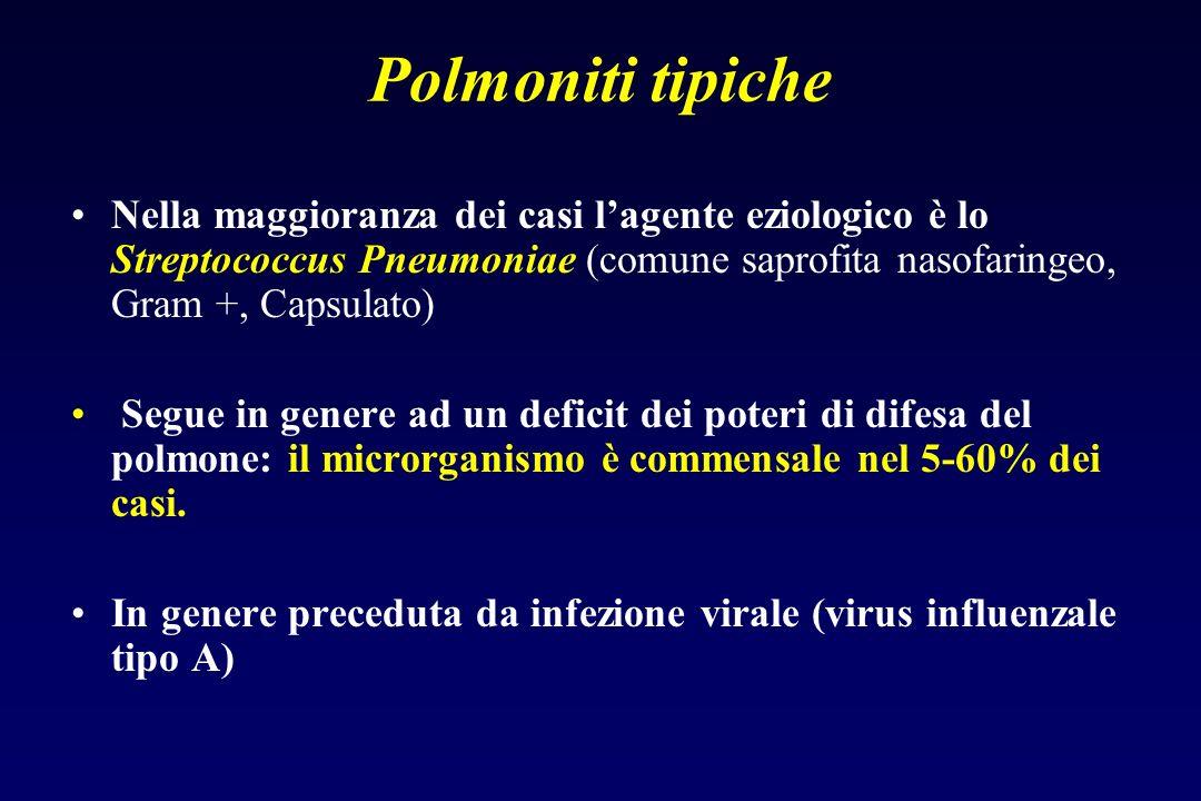 020406080 batteri virus virus-batteri Anziano Bambino % Polmonite extraospedalieraEZIOLOGIA