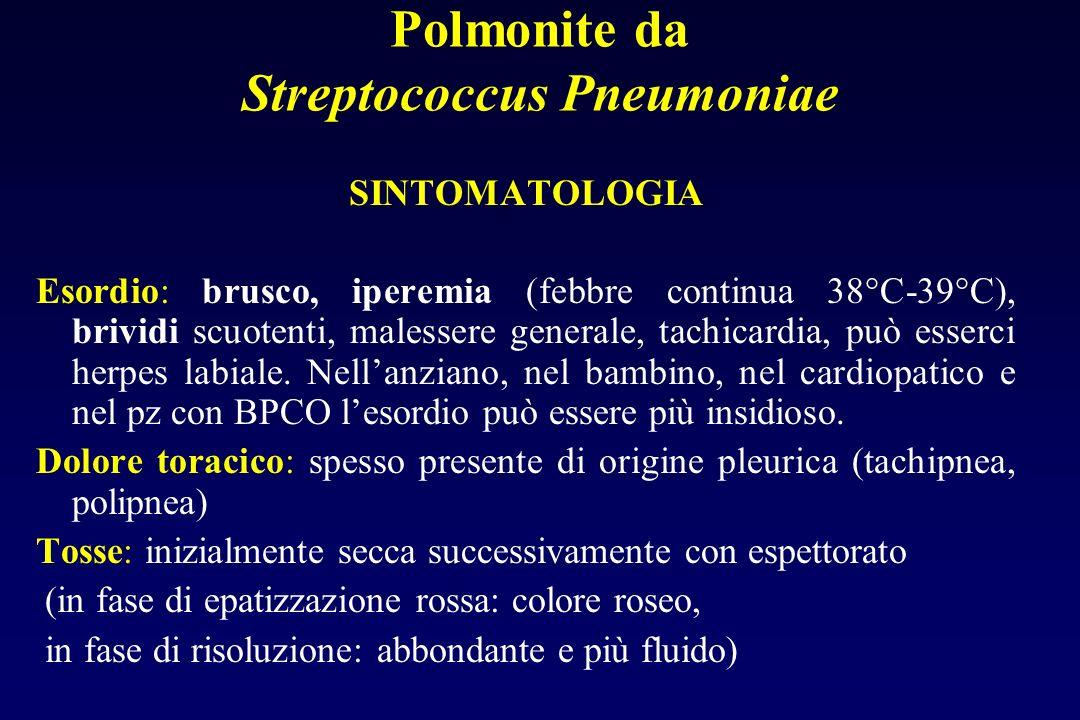 Paziente ambulatoriale Valutazione della gravità Diagnosi di polmonite infettiva Paziente ospedalizzato Esame obiettivo Rx Torace Sospetto di polmonit