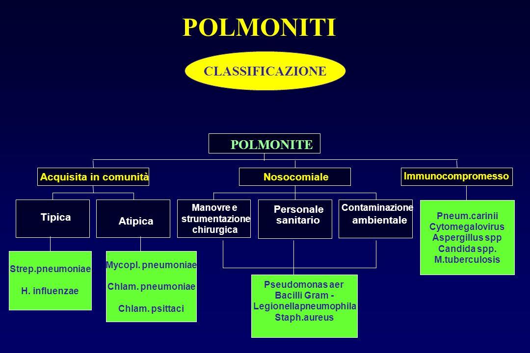 Polmoniti acquisite in comunità: in ambiente extraospedaliero Polmoniti nosocomiali: forme insorte in ambiente ospedaliero ad almeno 48-72 ore dal ric