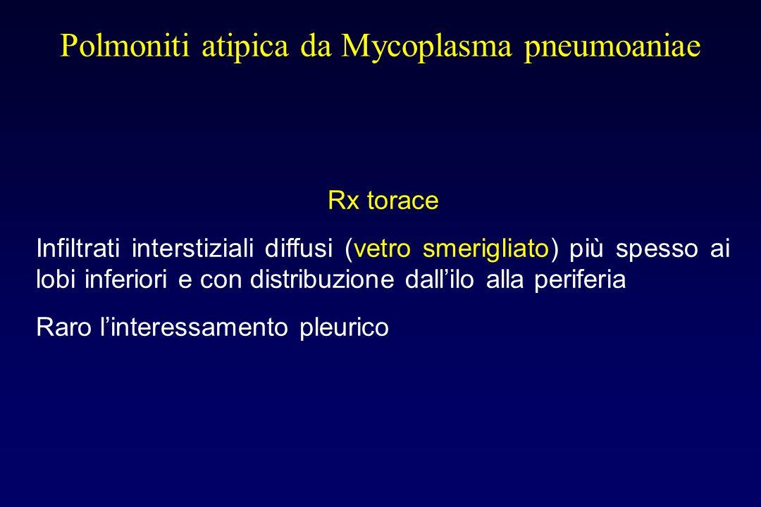 Polmoniti atipica da Mycoplasma pneumoniae Sintomatologia Nonostante linteressamento cospicuo dellinterstizio polmonare la sintomatologia è irrilevant