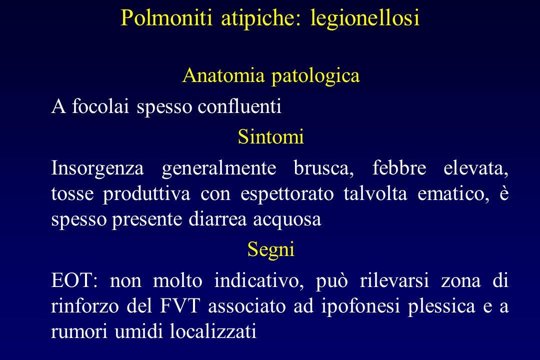 Polmoniti atipiche: legionellosi Legionella pneumophila, gram-. Trasmessa mediante linalazione di goccioline di acqua contaminate (umidificatori negli