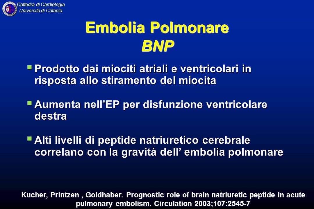 Cattedra di Cardiologia Università di Catania Prodotto dai miociti atriali e ventricolari in risposta allo stiramento del miocita Prodotto dai miociti