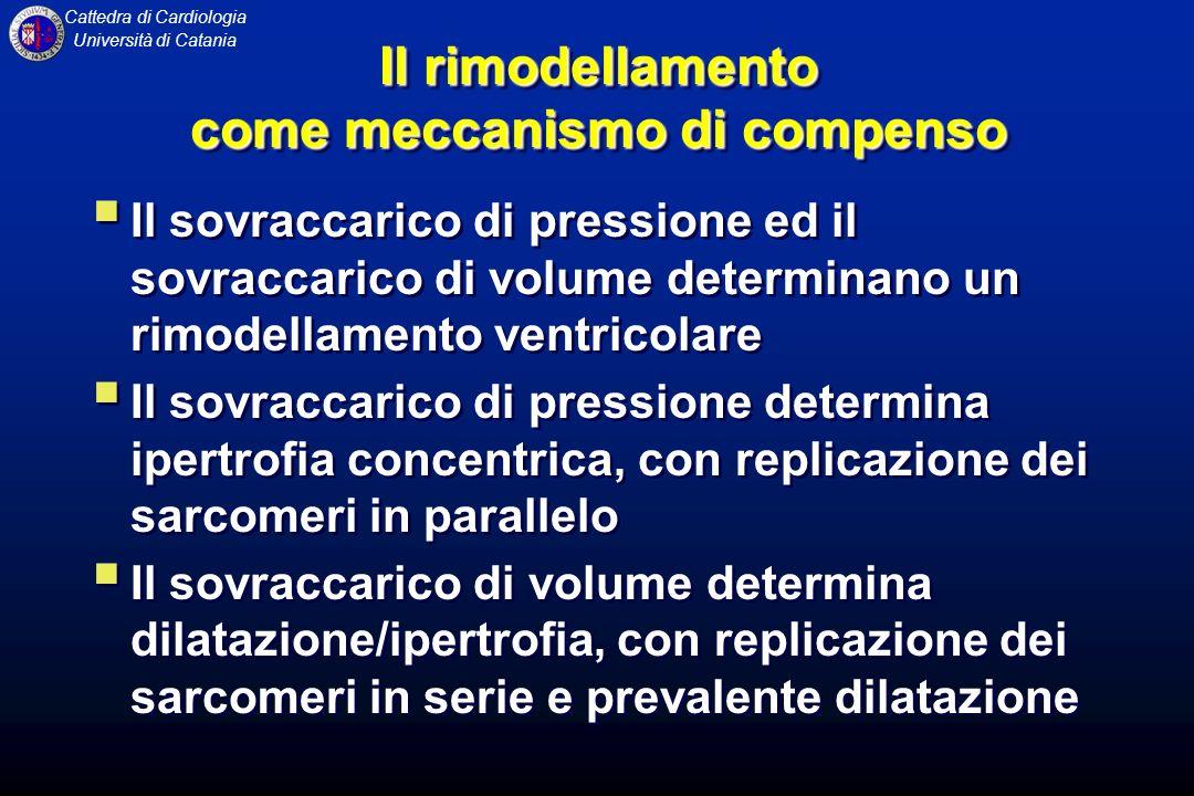 Cattedra di Cardiologia Università di Catania Il rimodellamento come meccanismo di compenso Il sovraccarico di pressione ed il sovraccarico di volume