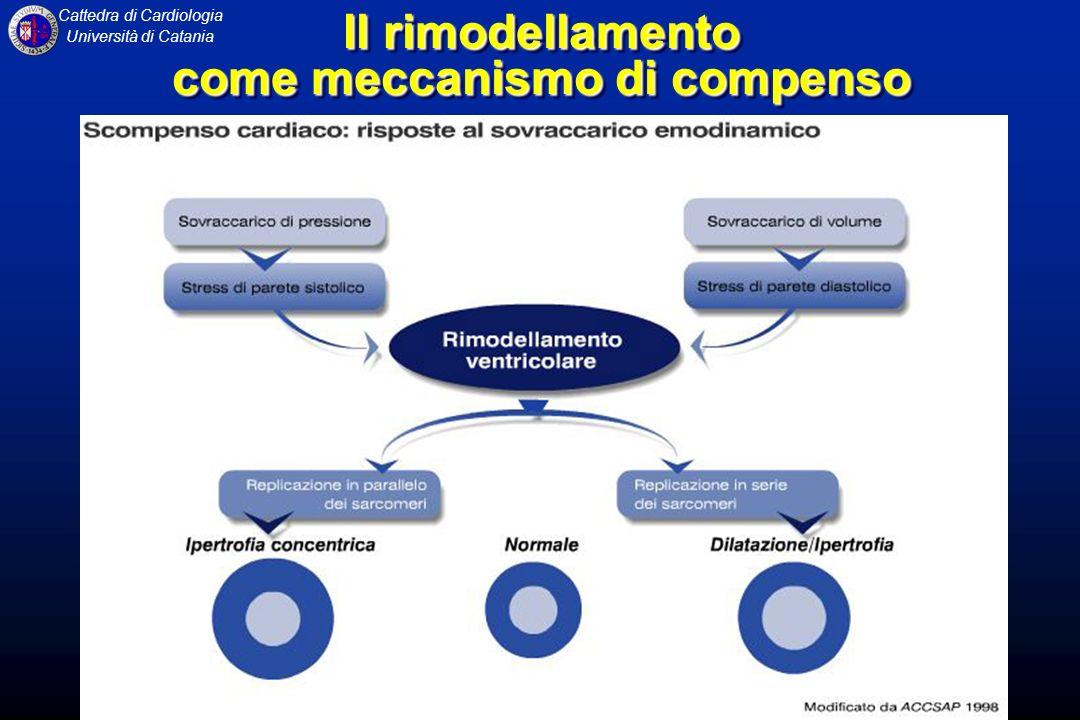 Cattedra di Cardiologia Università di Catania Il rimodellamento come meccanismo di compenso