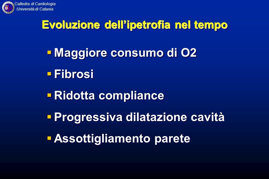 Cattedra di Cardiologia Università di Catania Evoluzione dellipetrofia nel tempo Maggiore consumo di O2 Fibrosi Ridotta compliance Progressiva dilataz