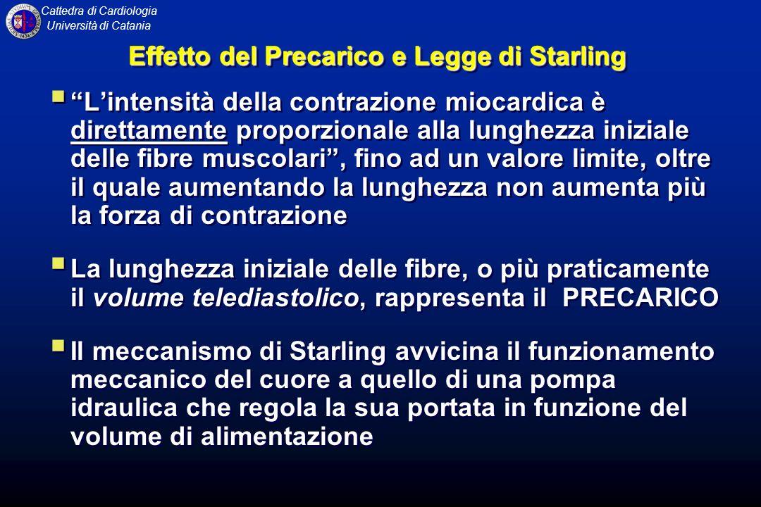 Cattedra di Cardiologia Università di Catania Effetto del Precarico e Legge di Starling Lintensità della contrazione miocardica è direttamente proporz
