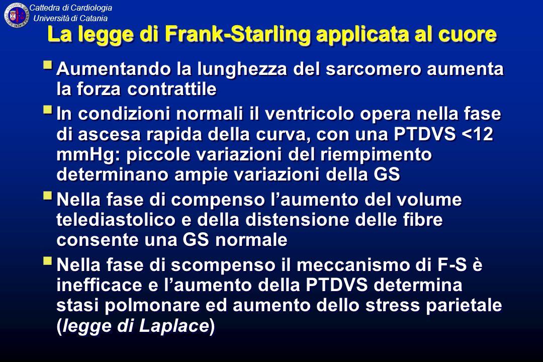 Cattedra di Cardiologia Università di Catania La legge di Frank-Starling applicata al cuore Aumentando la lunghezza del sarcomero aumenta la forza con