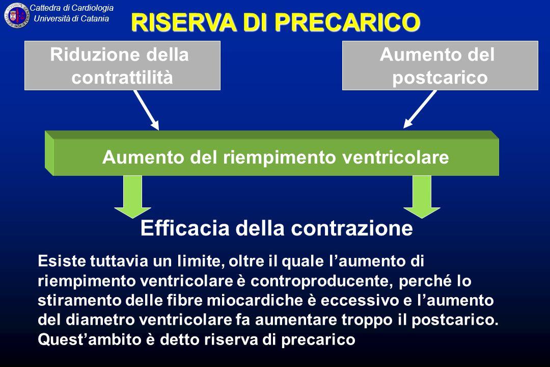 Cattedra di Cardiologia Università di Catania RISERVA DI PRECARICO Efficacia della contrazione Esiste tuttavia un limite, oltre il quale laumento di r