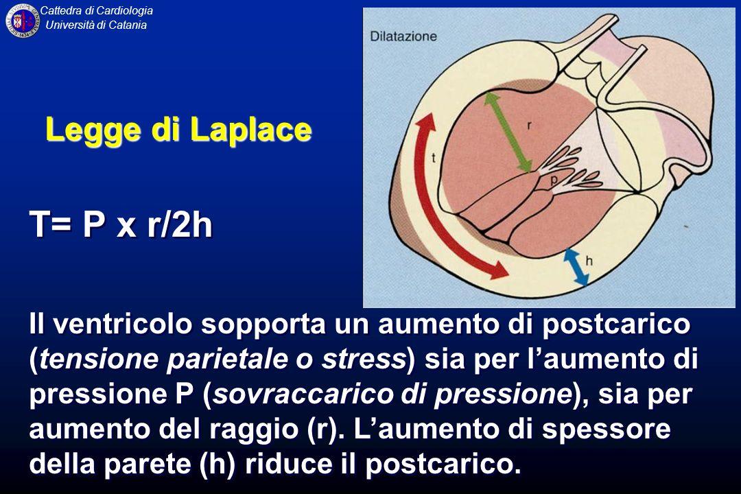 Cattedra di Cardiologia Università di Catania Legge di Laplace T= P x r/2h Il ventricolo sopporta un aumento di postcarico (tensione parietale o stres