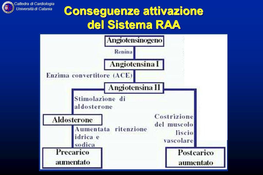 Cattedra di Cardiologia Università di Catania Conseguenze attivazione del Sistema RAA