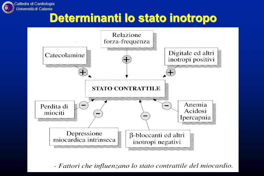 Cattedra di Cardiologia Università di Catania Determinanti lo stato inotropo