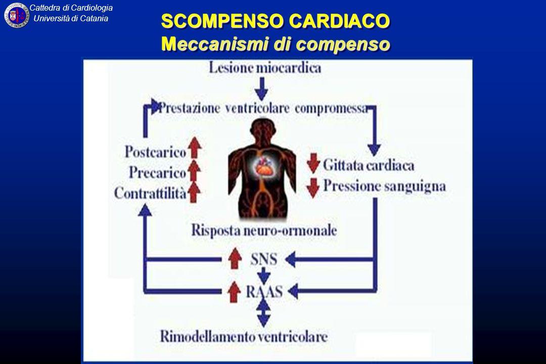 Cattedra di Cardiologia Università di Catania SCOMPENSO CARDIACO Meccanismi di compenso