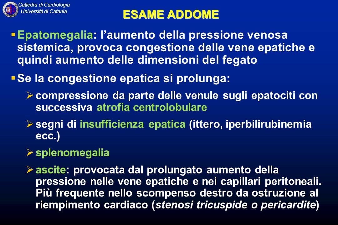 Cattedra di Cardiologia Università di Catania ESAME ADDOME Epatomegalia: laumento della pressione venosa sistemica, provoca congestione delle vene epa