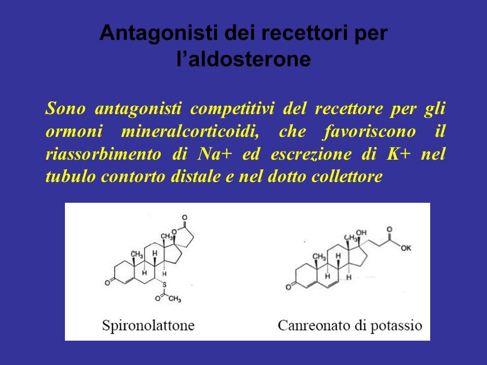 Antagonisti dei recettori per laldosterone Sono antagonisti competitivi del recettore per gli ormoni mineralcorticoidi, che favoriscono il riassorbime