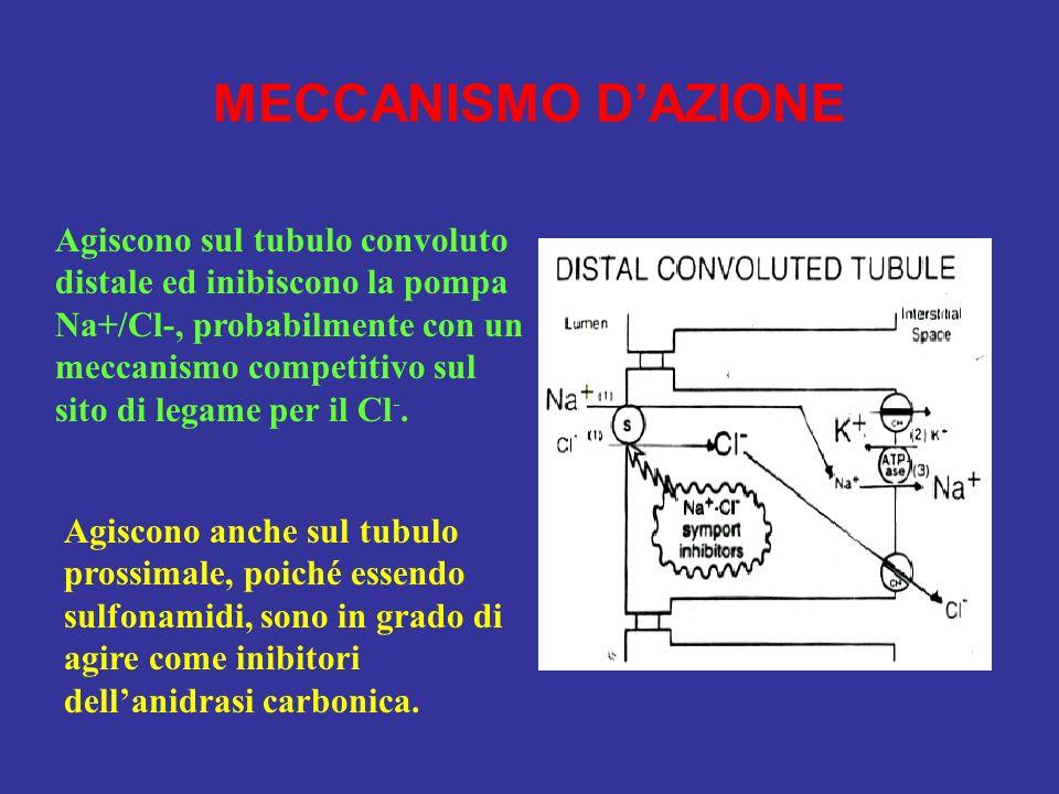 MECCANISMO DAZIONE Agiscono sul tubulo convoluto distale ed inibiscono la pompa Na+/Cl-, probabilmente con un meccanismo competitivo sul sito di legam