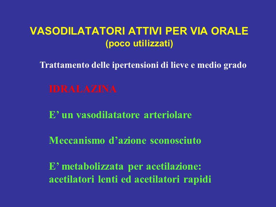 VASODILATATORI ATTIVI PER VIA ORALE (poco utilizzati) Trattamento delle ipertensioni di lieve e medio grado IDRALAZINA E un vasodilatatore arteriolare