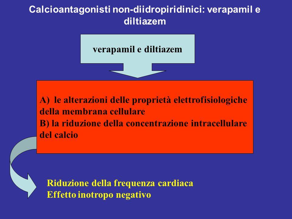 Calcioantagonisti non-diidropiridinici: verapamil e diltiazem verapamil e diltiazem A)le alterazioni delle proprietà elettrofisiologiche della membran