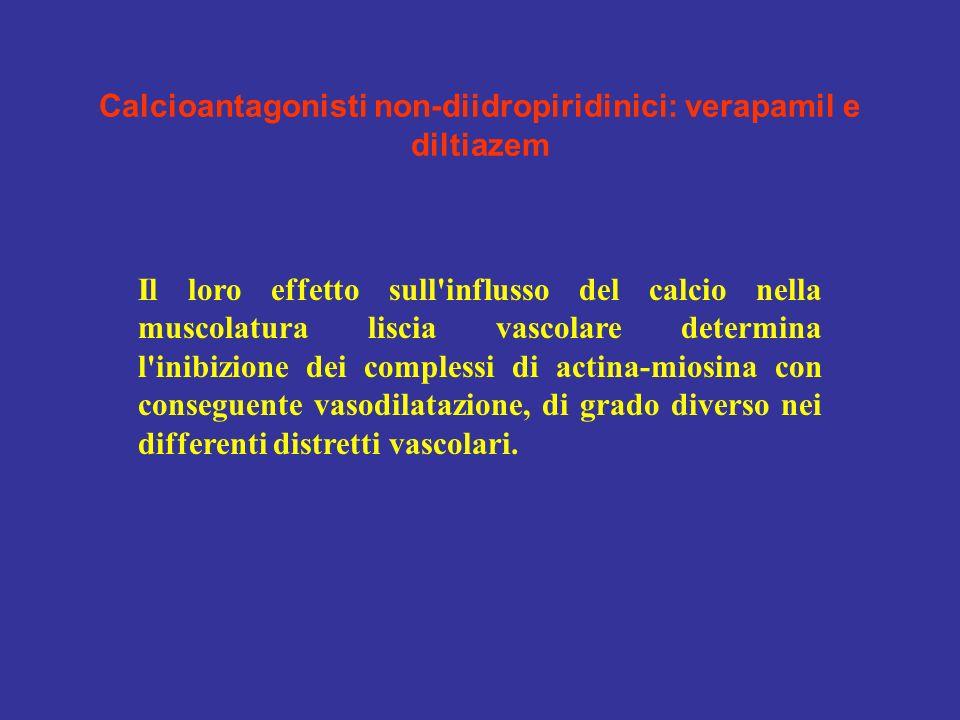 Calcioantagonisti non-diidropiridinici: verapamil e diltiazem Il loro effetto sull'influsso del calcio nella muscolatura liscia vascolare determina l'