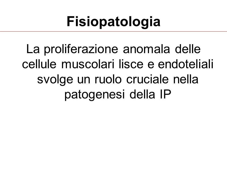 Fisiopatologia La proliferazione anomala delle cellule muscolari lisce e endoteliali svolge un ruolo cruciale nella patogenesi della IP