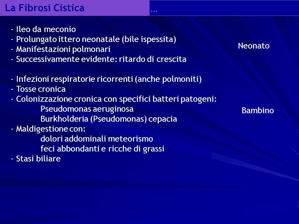 La Fibrosi Cistica … - Ileo da meconio - Prolungato ittero neonatale (bile ispessita) - Manifestazioni polmonari - Successivamente evidente: ritardo di crescita - Infezioni respiratorie ricorrenti (anche polmoniti) - Tosse cronica - Colonizzazione cronica con specifici batteri patogeni: Pseudomonas aeruginosa Burkholderia (Pseudomonas) cepacia - Maldigestione con: dolori addominali meteorismo feci abbondanti e ricche di grassi - Stasi biliare Neonato Bambino