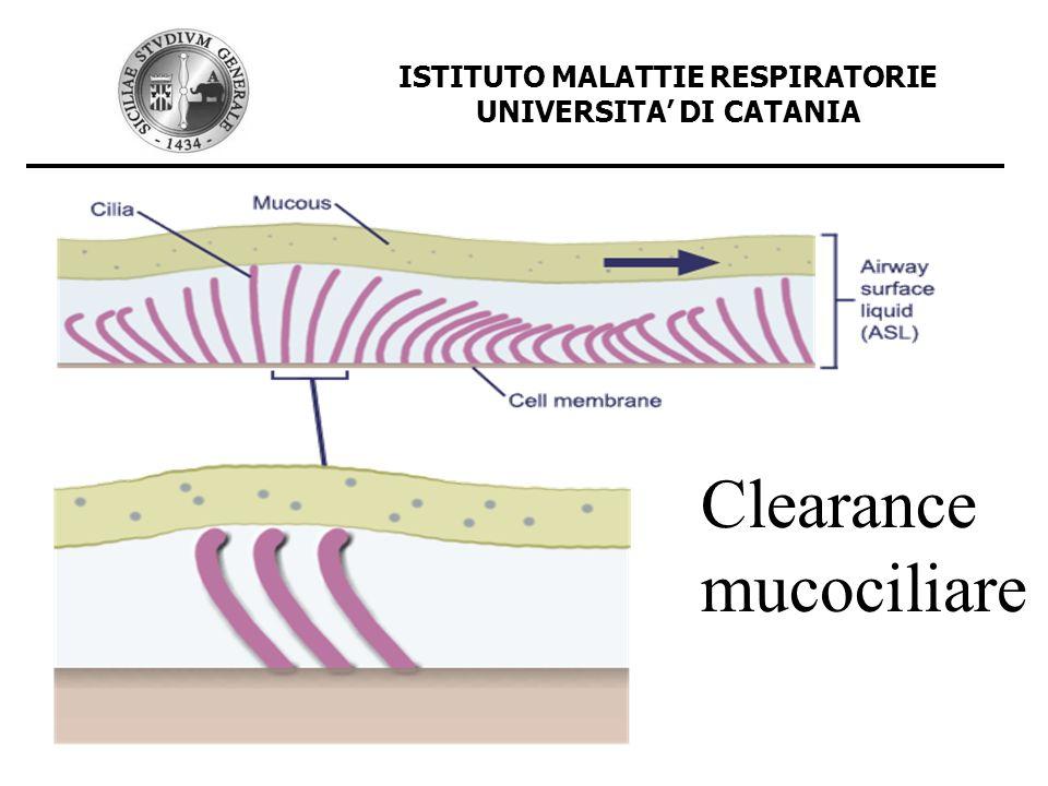 ISTITUTO MALATTIE RESPIRATORIE UNIVERSITA DI CATANIA Clearance mucociliare