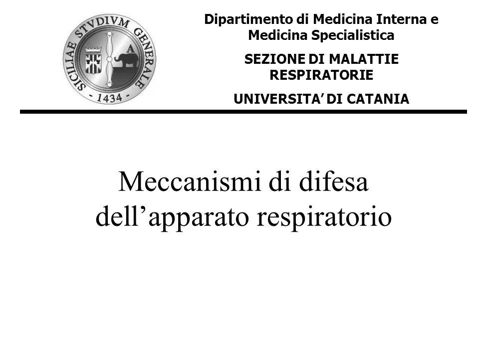 Meccanismi di difesa dellapparato respiratorio Dipartimento di Medicina Interna e Medicina Specialistica SEZIONE DI MALATTIE RESPIRATORIE UNIVERSITA D