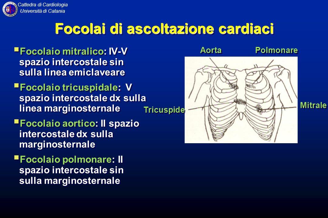 Cattedra di Cardiologia Università di Catania Focolai di ascoltazione cardiaci Focolaio mitralico: IV-V spazio intercostale sin sulla linea emiclavear