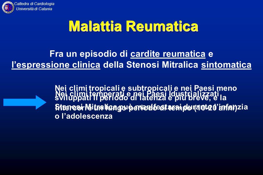 Cattedra di Cardiologia Università di Catania INSUFFICIENZA MITRALICA Trattamento TERAPIA MEDICA Profilassi antibiotica dellendocardite batterica Vasodilatatori: riducono il post-carico durante la fase di eiezione aortica e quindi la pressione endoventricolare, riducendo lentità del rigurgito Digitale: cardiocinetico Diuretici: solo se è presente congestione polmonare TERAPIA CHIRURGICA TERAPIA MEDICA Profilassi antibiotica dellendocardite batterica Vasodilatatori: riducono il post-carico durante la fase di eiezione aortica e quindi la pressione endoventricolare, riducendo lentità del rigurgito Digitale: cardiocinetico Diuretici: solo se è presente congestione polmonare TERAPIA CHIRURGICA
